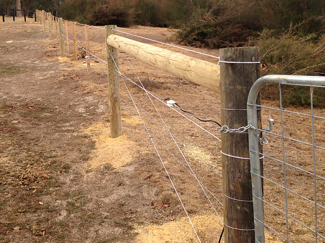 Horse Fencing, Post & Wire Fencing - Warrandyte