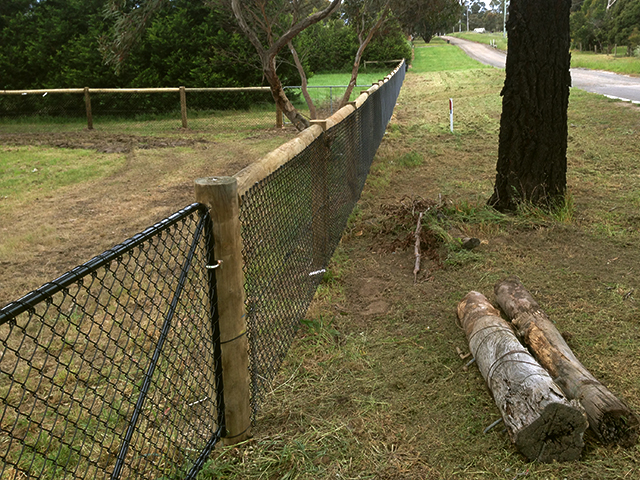 Post & Wire Fence, Yarrambat